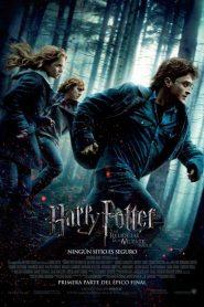 Harry Potter y las reliquias de la muerte – Parte I