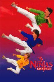 Los tres pequeños ninjas contraatacan