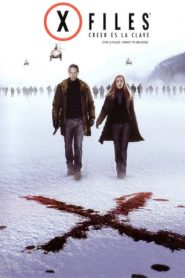 Los expedientes secretos X 2 (The X Files: I Want to Believe)