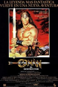 Conan el Destructor (Conan the Destroyer)