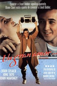 Un gran amor (Say Anything)