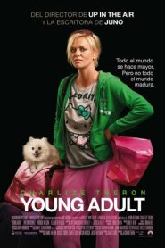 Adultos jovenes (Young Adult)