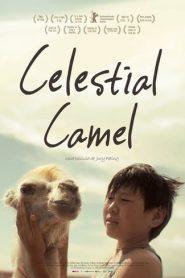 Celestial Camel (Nebesnyy verblyud)