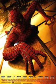 El hombre araña (Spiderman)