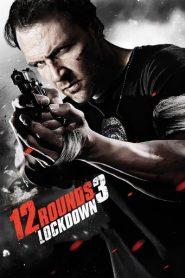 12 balas (12 Rounds 3: Lockdown)