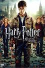 Harry Potter y las reliquias de la muerte (2ª parte)