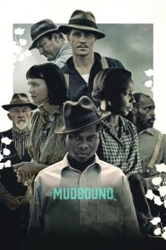 el color de la guerra / Mudbound