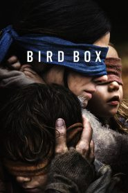 A ciegas (Bird Box) [2018][online][Mega]