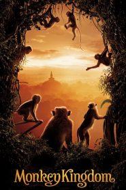 El reino de los monos 2015