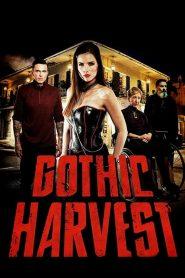Gothic Harvest 2019