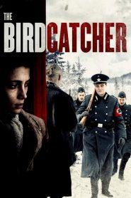 The Birdcatcher (El Cazador de Pájaros) 2017