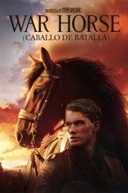 War Horse (Caballo de batalla) 2011
