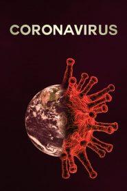 Coronavirus Como Comenzo Todo 2020
