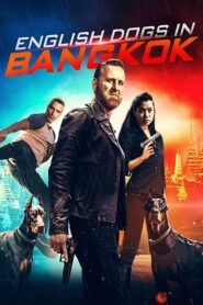 English Dogs in Bangkok 2020