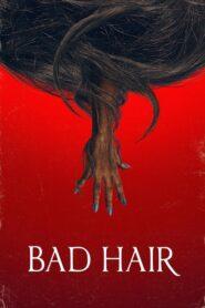 Bad Hair 2020