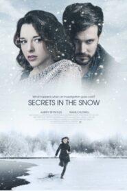 Killer Secrets in the Snow 2020
