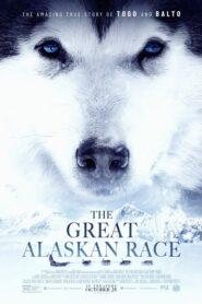 The Great Alaskan Race 2019