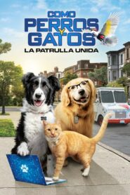 Como perros y gatos: La patrulla unida 2020