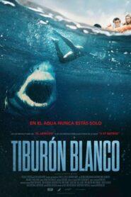 Tiburón blanco 2021