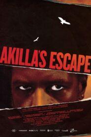 Akilla's Escape 2020