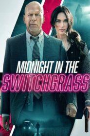 Midnight in the Switchgrass 2021