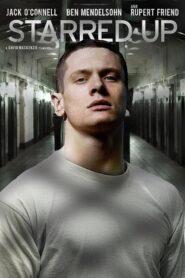 Convicto 2013
