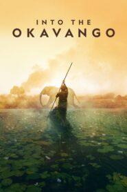 Into the Okavango 2018