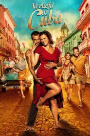 Cuban Love 2021