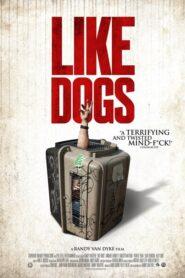Like Dogs 2021